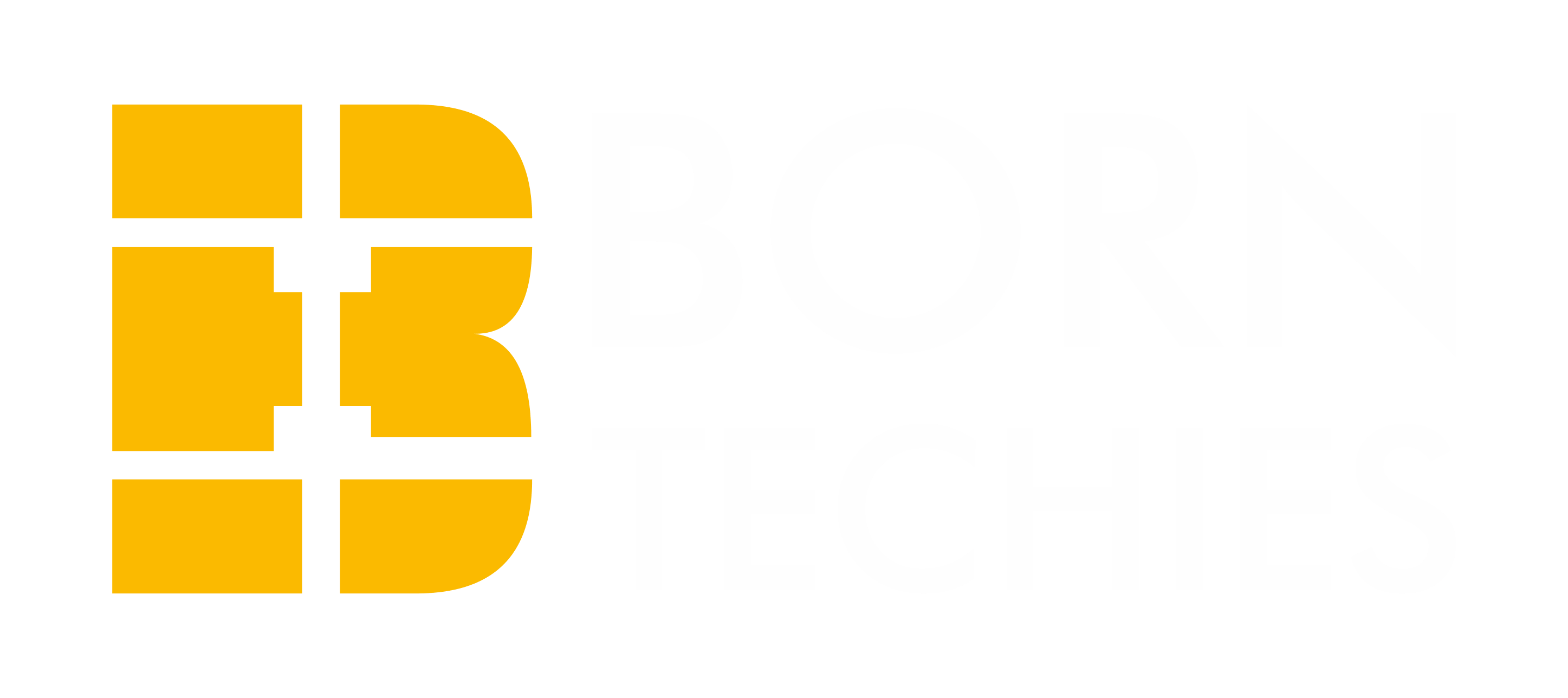 Born Techies Private Limited